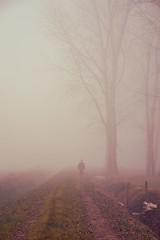 Futuro incerto (Colombaie) Tags: life alberi strada campagna uomo va provincia nebbia inverno atmosfera solitario futuro campi solitudine risaie incertezza navara cammina svanire ovattata briona flickraward