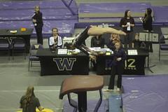 Alex Yacalis vault (Susaluda) Tags: uw sports gold washington university purple huskies gymnastics dawgs