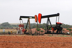 Red-headed Woodpeckers -Twin oil pumps Near Spur, Texas  4288x2848 (Charlotte Clarke Geier) Tags: wallpapers screensavers