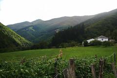 La Peral (juanrgallo) Tags: asturias tineo asturien laperal rellanos cuartodelosvalles