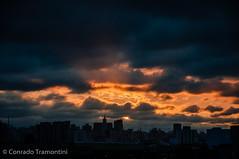 Fim de tarde. (Conrado Tramontini (Conras)) Tags: sunset orange cloud sol san paolo ngc laranja pablo prdosol paulo sao prdios cityline buidings poente nunves