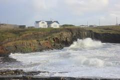 IMG_8357 (DaveGifford) Tags: ireland spanishpoint wildatlanticway