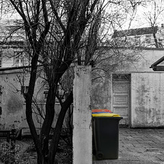 backyard (j.p.yef) Tags: bw tree germany backyard hamburg sw walls trashcans baum hinterhof yef mlltonnen mixedcolors peterfey bestcapturesaoi elitegalleryaoi jpyef