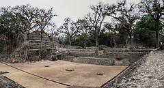 "Copan Ruinas: la Place des Jaguars <a style=""margin-left:10px; font-size:0.8em;"" href=""http://www.flickr.com/photos/127723101@N04/25945034184/"" target=""_blank"">@flickr</a>"