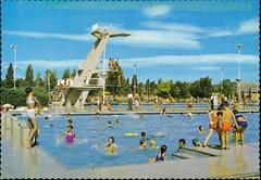 ACP 1391 Canberra Olympic Swimming Pool (c1968) (ArchivesACT) Tags: city swimmingpool postcards canberra australiancapitalterritory archivesact australiancolourpostcards uwesteinward