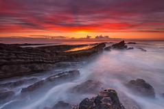 Howick Scar (Calum Gladstone) Tags: seascape sunrise northumberland scar howick leefilters canon6d
