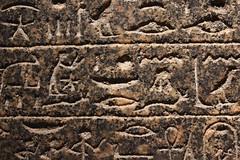 Egyptian Hierogliphs (MagMaster) Tags: england london wall museum egyptian british section hieroglyphs