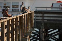 Nikon 200mm f2 VR Nikon d810 (JphotoArt.com) Tags: 2 test beach nikon photos shots wildlife newport f2 nikkor vr 200mm d810