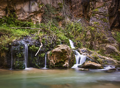 Forever Young (Matty Patty Photography) Tags: nature beauty utah spring young calm canyon zion forever narrows