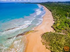 Corredor ecolgico del noreste (JavierVazquez) Tags: puertorico fajardo luquillo