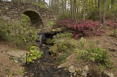 stone bridge and azaleas (Pejasar) Tags: green water stone garden landscape waterfall woods stream azaleas arkansas hotsprings stonebridge garvanwoodlandgardens
