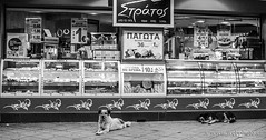 who let the dogs out (www.webphoto.gr) Tags: street dogs out photography who greece let timeless macedonian makedonia  macedoniagreece