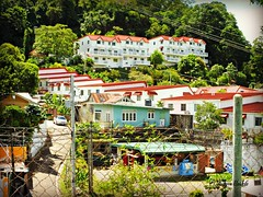 """""""You are never too old to set another goal or to dream a new dream."""" - C. S. Lewis (Trinimusic2008 - stay blessed) Tags: trees vacation urban nature fence outdoors island flats trinidad tropical tt condos hff trinidadandtobago housingdevelopment trinimusic2008 judymeikle"""