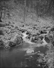 . (OverdeaR [donkey's talking monkey's nodding]) Tags: longexposure bw mountain zeiss creek forest spring woods rocks conversion fe cb a7 divcibare 3528 nd4 divčibare maljen