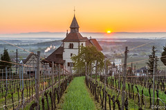 Chapelle St Sebastien (Nu Mero) Tags: sunset france sunrise paysage fr vignoble chapelle coucherdesoleil leverdesoleil dambachlaville alsacechampagneardennelorraine alsacechampagneardennelorrain
