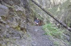 tillamookhike12 (jcravens) Tags: oregon forest hike campground galescreek stateforest tillamookforest