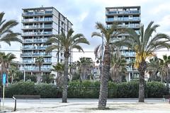 Balcones (Fnikos) Tags: road street door sky plant building window nature skyline architecture facade bench outdoor balcony palm palmtree buildingcomplex