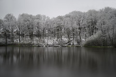 April snow showers (manphibian) Tags: morning trees winter white snow water reflections calm reservoir april serene blizzard