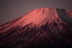 Beni Fuji (Yuga Kurita) Tags: morning pink red japan fuji mt mount fujisan fujiyama beni yamanakako