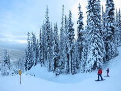 Eyeing up the off-piste (Ruth and Dave) Tags: trees dave standing snowboarding skiing looking father daughter skiresort bumps snowboarder skier sunpeaks offpiste catrin sunpeaksresort cahilty