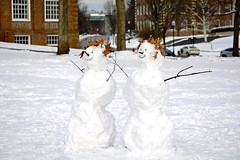 Snowmen we have met 3 (rachel.roze) Tags: snow snowmen hanover dartmouth january2016