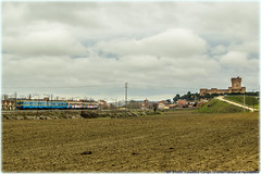 La caza del ao (440_502) Tags: madrid del de la grande valladolid campo medina mota 440 castillo 152 501 fuencarral 078 096 aafm