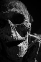 11 (Sébastien Bruzzo) Tags: paris museum skeleton noiretblanc musée nb tokina homme mankind muséedelhomme bokina sonya7r