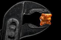 Soft? (HS_Burnum) Tags: bear orange black macro contrast vibrant colorfull gummibrchen pipe minimalism gummi kontrast schwarz mondays wrench pliers colourfull gaspipe zange rohrzange macromondays