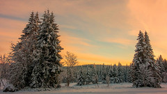 Schwarzwaldwinter (Panasonikon) Tags: winter schwarzwald blackforest schnee abendlicht sonyrx100 martinskapelle loipe sunset panasonikon explore