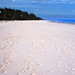 Bahamas 1989 (342) Eleuthera: Harbour Island