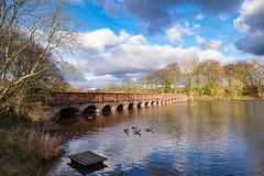 Nineteen Arches (Mister Oy) Tags: bridge england reflection water sthelens davegreen wintersun leadinglines billinge carrmilldam oyphotos fujixt1 fuji1024mm oyphotos