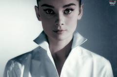 Icons - Audrey (Billy-Fish) Tags: color colour art beauty digital silver star icon screen photographic audrey restoration hepburn colourisation billyfish