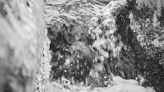 B&W-00678 (alessandro.polla) Tags: bridge blackandwhite bw italy mountains ice nature water river landscape woods iced woodbridge tentino