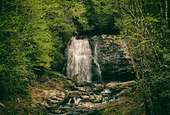 Waterfall - Great Smoky Mountains National Park, TN, USA (The Shared Experience) Tags: wild usa green nature landscape outdoors spring tn lanscape d800 2014 greatsmokymountainsnationalpark gsmnp niksoftware