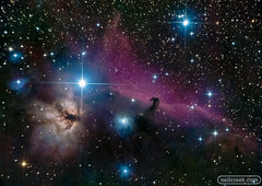 Horsehead Nebula from Quintana (neilcreek) Tags: pink blue black yellow stars star space astro flame nebula astrophotography orion astronomy ngc2024 ic434 share horsehead nebulas nebulae