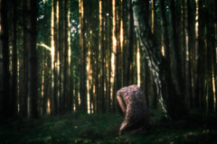 birch-tree (mystery_live) Tags: morning pink wild people woman green nature girl forest landscapes three dream poland birch pollen threes mysterylive