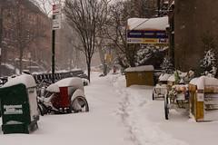 Snowstorm Jonas-17 (Diacritical) Tags: snow brooklyn iso800 pattern jonas blizzard 48 f50 2470mmf28 0ev nikond4 nikoncorporation sec secatf50 douglascpalmer2014 january232016 snowstormjonas