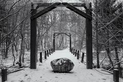 Rocky Road (Yewbert The Omnipotent) Tags: park city bridge winter urban bw snow toronto canada blackwhite lightroom