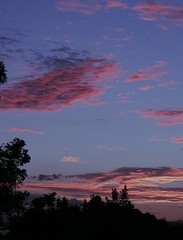 Sunset 51 (Images by Jeff - from the sea) Tags: pink trees sunset sky clouds nikon bluesky pinksunset pinkclouds p520
