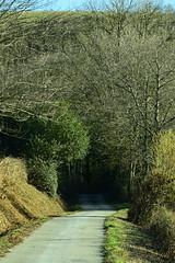 Un jour d'hiver (La Magie Du Moment) Tags: nature montagne hiver tunnel route paysage campagne extrieur