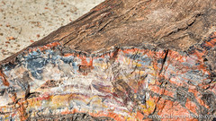 Petrified Forest National Park - AZ-14.jpg (gaillard.galopere) Tags: wood red arizona sky orange usa color water rock stone outside eau iron desert pueblo explore ciel enjoy fort bois discover petrifiedforest germs 2016 anazasi exterieur decouverte ptrifi