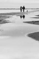 A orillas del Amor (Nicols Rosell) Tags: sea espaa blancoynegro reflections mar spain nikon europa europe playa catalonia personas perro reflejo catalunya tarragona d7100 blackwhrite nikond7100