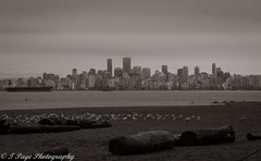There's No Place Like Home (trishp97) Tags: city blackandwhite canada beach skyline vancouver landscape
