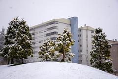 _APB2763 (2) (plazaberribaranain) Tags: nikon nieve baraain invierno agustin navarre elurra navarra nafarroa negua d7200 agustinpea nikond7200 plazaberri plazaberriinfo