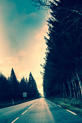 ROAD TO TWIN PEAKS (Phil3 (ex Bassapower)) Tags: road trees winter light sky snow france sunrise route twinpeaks ontheroad pinetrees sapin correze hivers phil3 francetrees bassapower