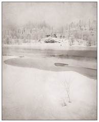 Winter trees II (Georg Engh) Tags: winter vinter infrared textured evje infrard hgs landscapesshotinportraitformat topstad gautestad