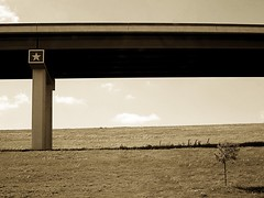 Texas still life {82/366} (therealjoeo) Tags: tree grass sepia landscape texas overpass wyeth 365 366 365project
