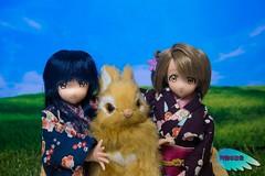 Umi & Kotori ( (Tenshi no Nichijou)) Tags: umi kotori azone pureneemo