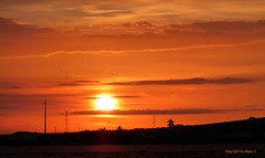 Sonnenaufgang * Sunrise * Salida del Sol * . P1130787-002 (maya.walti HK) Tags: sun sol sunrise flickr sonne moods sonnenaufgang 2010 salidadelsol stimmungen nimos 100316 panasonicfz28 copyrightbymayawaltihk