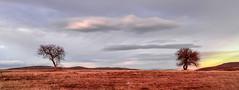 isolated (drstar.) Tags: landscape flickr d610 flickrturkey isolatednatur